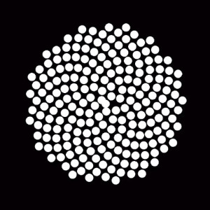 Procedural Phyllotaxis
